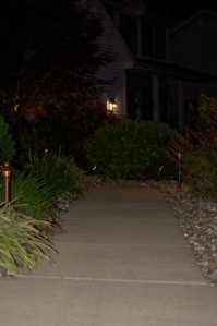 St._Louis_tree_lighting