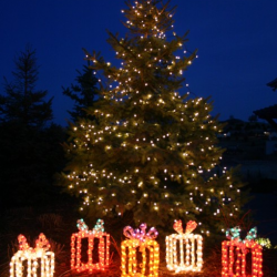 lighted yard displays of presents under a lighted exterior holiday christmas tree