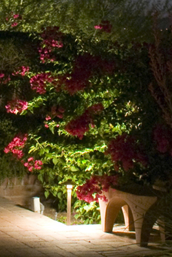 St. Louis landscape lighting garden lighting