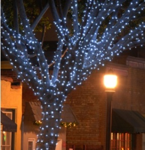 OLP Holiday tree lighting
