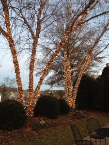 mini light outdoor tree lighting St Louis