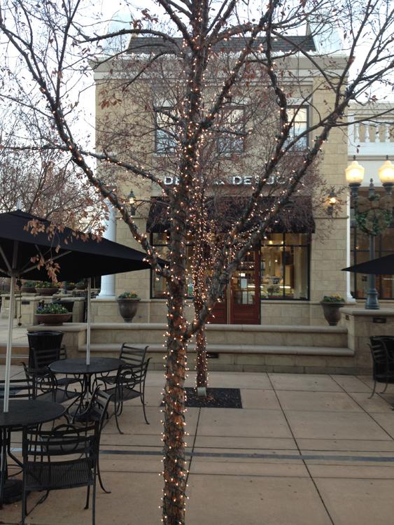Tree Lighting Outdoor Lighting And Landscape Lighting In St Louis
