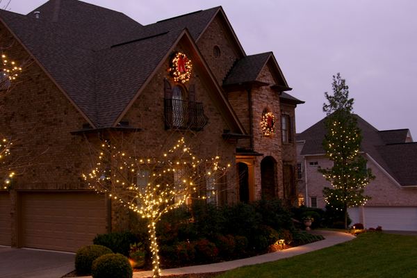 led mini lights are used to decorate this front yard tree now a tree that
